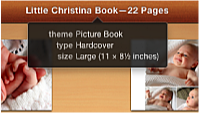 Image showing the theme, type, and size information that appears when the pointer is positioned over a book name