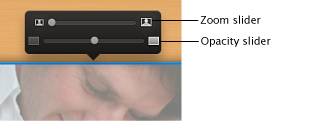 Image of the zoom slider and opacity slider