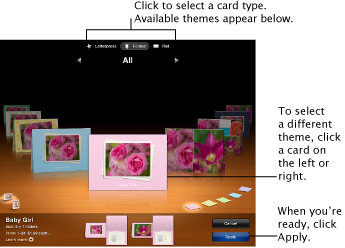 Image of the window, showing card themes