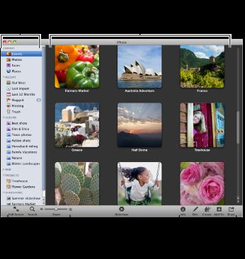 整个 iPhoto 窗口的图像