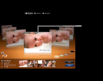 显示相册主题及其他选项的窗口的图像