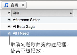 音樂中的「歌曲」顯示方式詳細資訊,顯示註記框