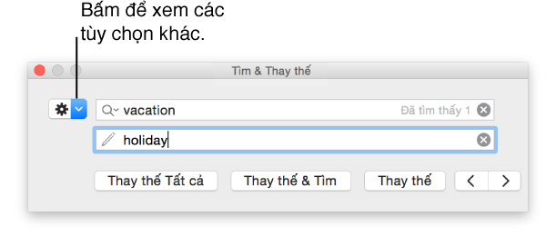 Cửa sổ Tìm & Thay thế có lời nhắc về nút để hiển thị thêm tùy chọn