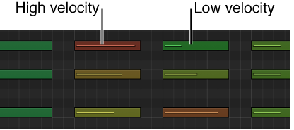 Figure. Different vote velocities indicated by colors in Piano Roll Editor.