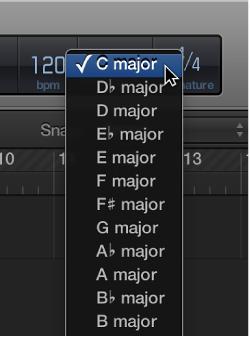 Figure. Key pop-up menu in the LCD.