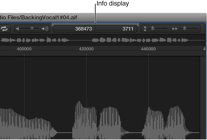 Figure. Info display in the Sample Editor.