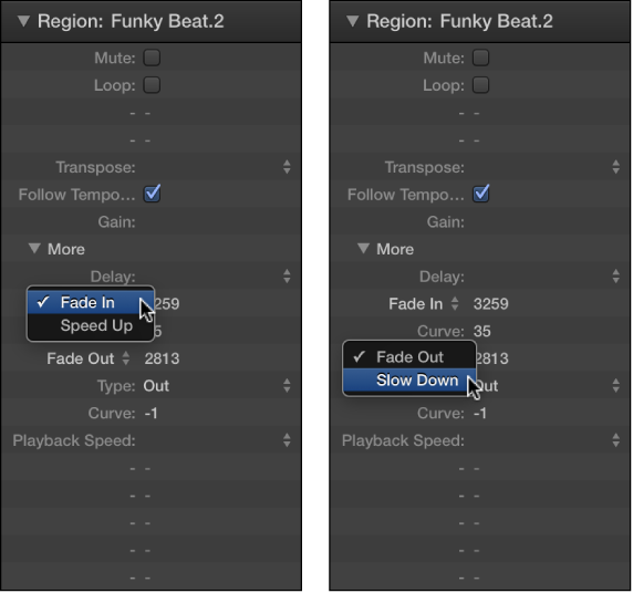 Figure. Speed Up and Slow Down parameters in the Region inspector.