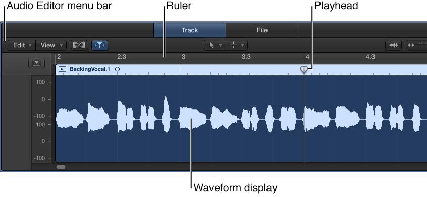 Figure. The Audio Track Editor.