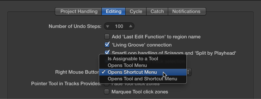 Figure. Right Mouse Button menu in the Editing pane in the General preferences.