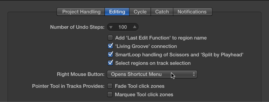 Figure. Pointer Tool checkboxes in the Editing pane in the General preferences.