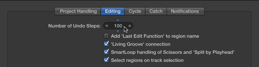 "Figure. ""Number of Undo Steps"" field in the Editing pane in the General preferences."
