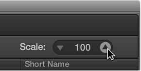 Figure. Scale parameter in the Score Set window.