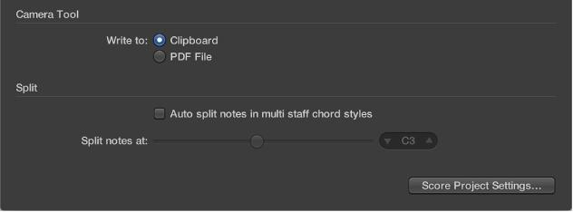 Figure. Camera tool settings in Score preferences pane.