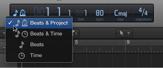 Figure. Selecting Beats & Project in the LCD to display project properties.