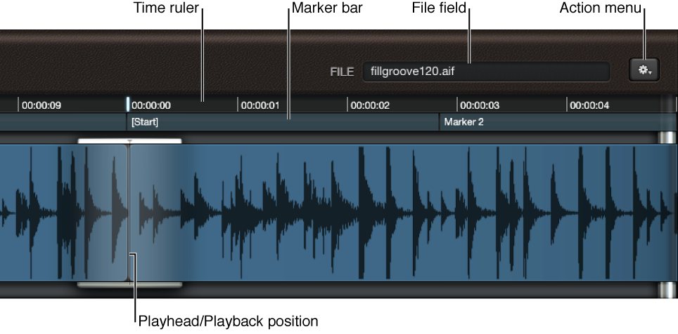 Figure. Waveform display, showing File field, ruler, and playhead.