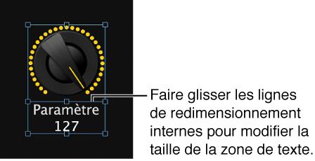 Figure. Redimensionnement de la zone d'affichage du texte d'un contrôle d'écran par glissement du guide de redimensionnement intérieur.