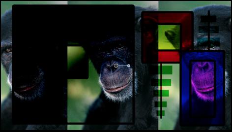 """Canvas mit Kombination aus Farbfeldern und dem Affen unter Verwendung der Füllmethode """"Linear nachbelichten"""""""