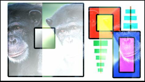 """Canvas mit Kombination aus Farbfeldern und dem Affen unter Verwendung der Füllmethode """"Linear abwedeln"""""""