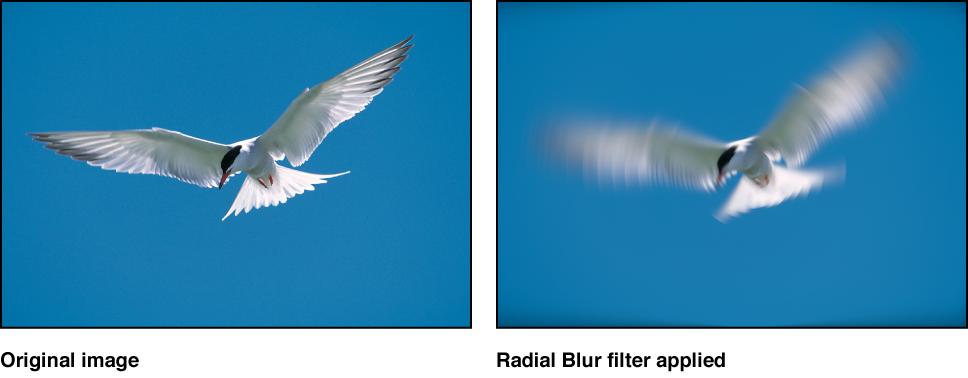 """Canvas mit dem Effekt des Filters """"Radial weichzeichnen"""""""