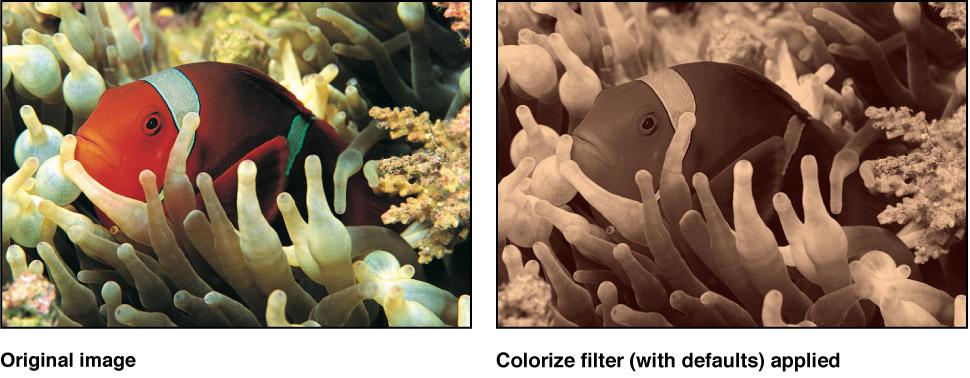 "Canvas mit dem Effekt des Filters ""Farbe"""