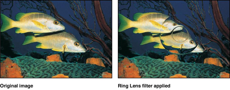 "Canvas mit dem Effekt des Filters ""Ringförmige Linse"""