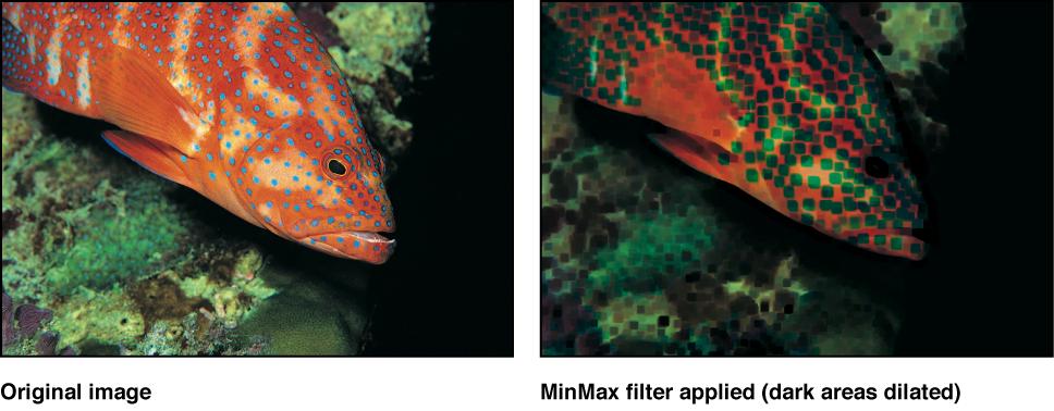 """Canvas mit dem Effekt des Filters """"MinMax"""""""