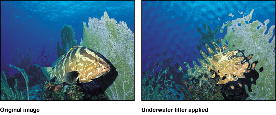 """Canvas mit dem Effekt des Filters """"Unterwasser"""""""