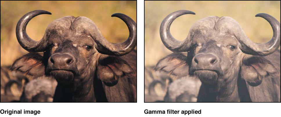 "Canvas mit dem Effekt des Filters ""Gamma"""