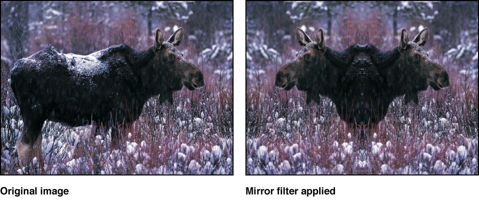 """Canvas mit dem Effekt des Filters """"Spiegel"""""""