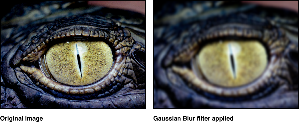 """Canvas, der den Effekt des Filters """"Gauß'sches Weichzeichnen"""" zeigt."""