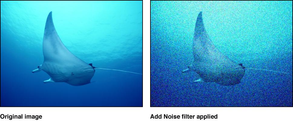 """Canvas mit dem Effekt des Filters """"Störungen hinzufügen"""""""