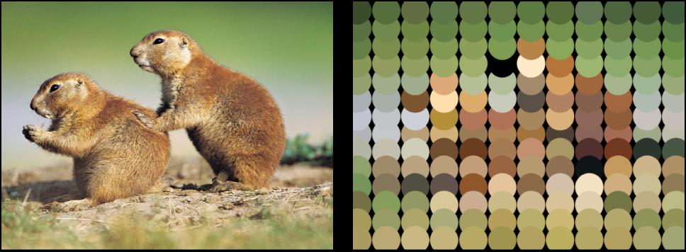 """Canvas mit Replikator, für den """"Bildfarbe verwenden"""" eingestellt wurde."""