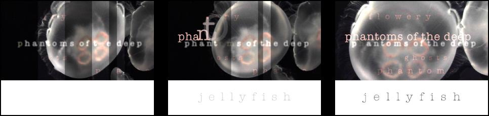 Drei Bilder mit sequenzieller Textanimation vor einem Hintergrund, der im Wasser treibende Quallen zeigt.
