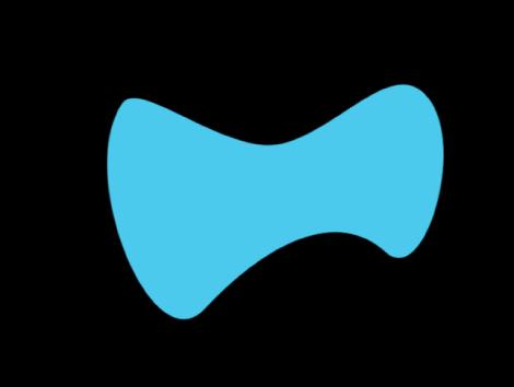 Canvas mit fliegenförmigem Objekt.