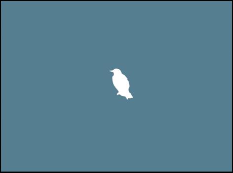 Canvas mit einem Hintergrundbild und der Form eines weißen Vogels.