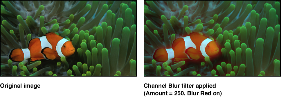 Canvas showing effect of Channel Blur filter