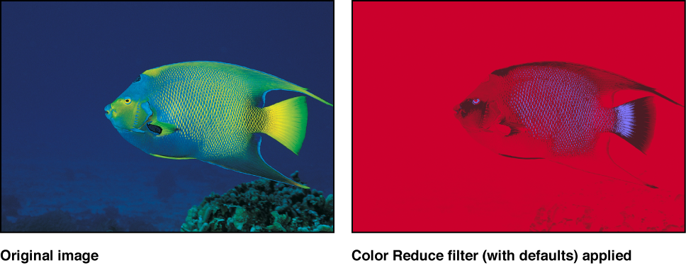 Canvas showing effect of Color Reduce filter