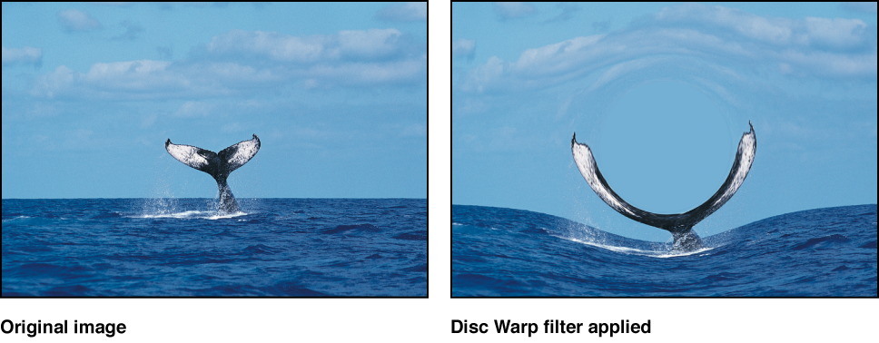 Canvas showing effect of Disc Warp filter