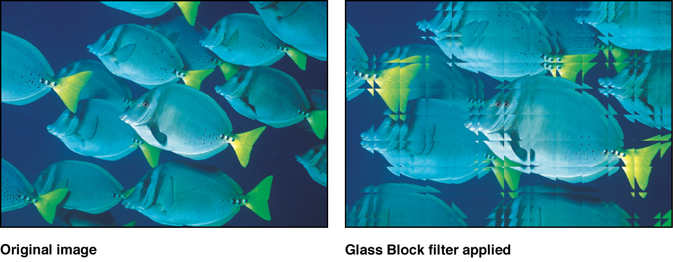 Canvas showing effect of Glass Block filter