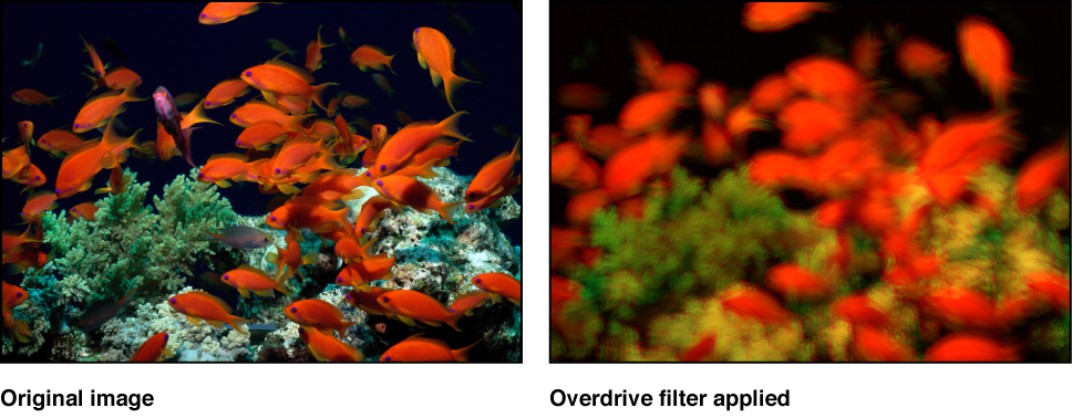 Canvas showing effect of Overdrive filter