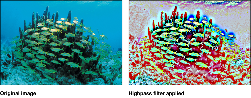 Canvas showing effect of Highpass filter