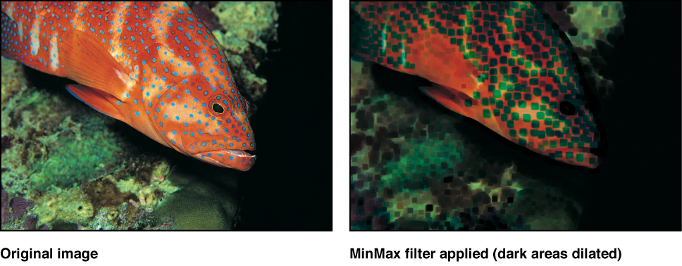 Canvas showing effect of MinMax filter