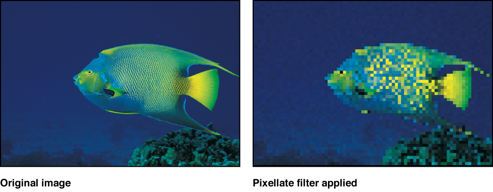 Canvas showing effect of Pixellate filter