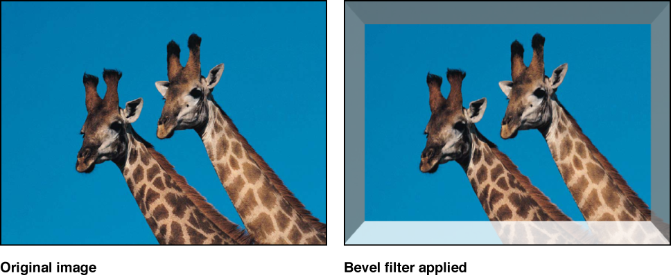 Canvas showing effect of Bevel filter