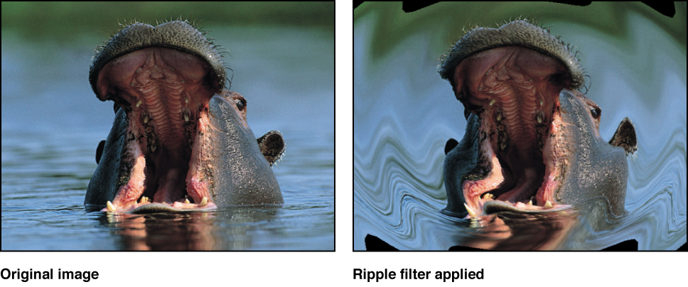 Canvas showing effect of Ripple filter