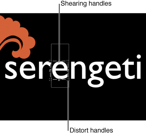 Canvas showing onscreen controls for  sequence text behavior