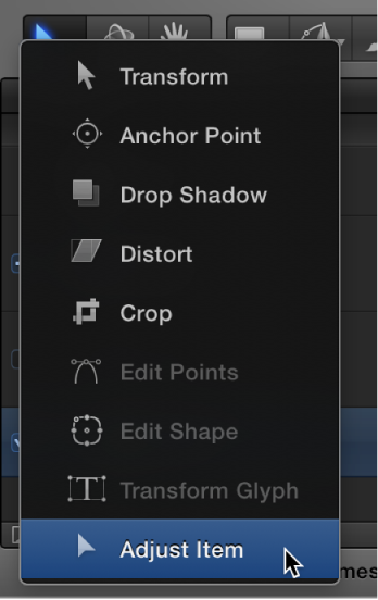 Selecting the Adjust Item tool from the 2D transform tools pop-up menu