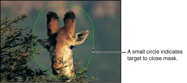 Canvas showing mask close target