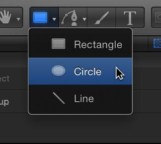 Circle tool in toolbar