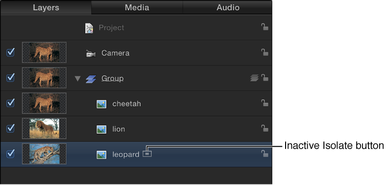 Layers list showing Isolate button (inactive)